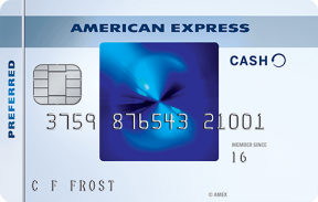 Blue Cash Preferred® Card from American Express photo